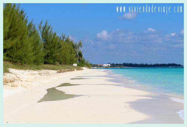 Playas en Grand Bahama