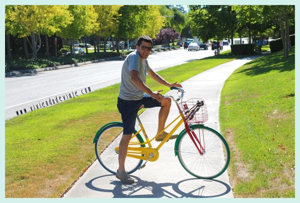 Google Silicon Valley