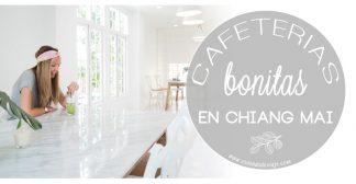 Cafeterías bonitas en Chiang Mai que no puedes perderte