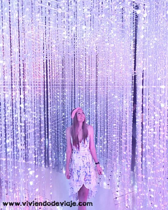 Que ver en Singapur, ArtScience Museum
