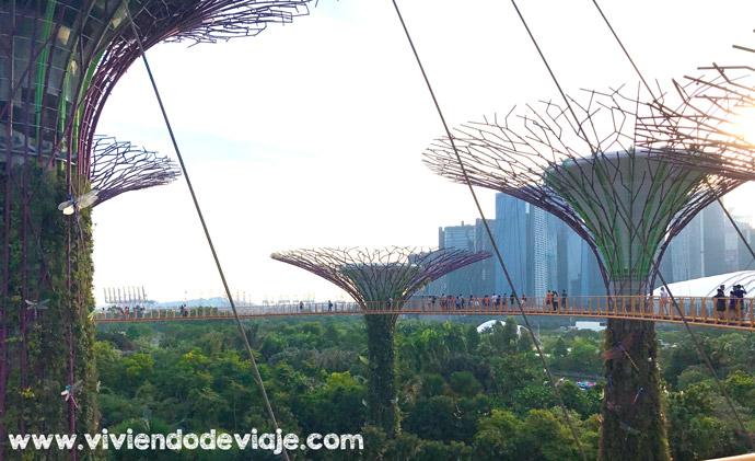 Cosas que ver y hacer en Singapur en 3 días, OCBC Skyway