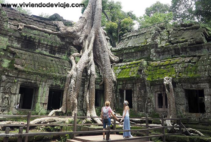 Circuito corto por los Templos de Angkor, Ta Prohm