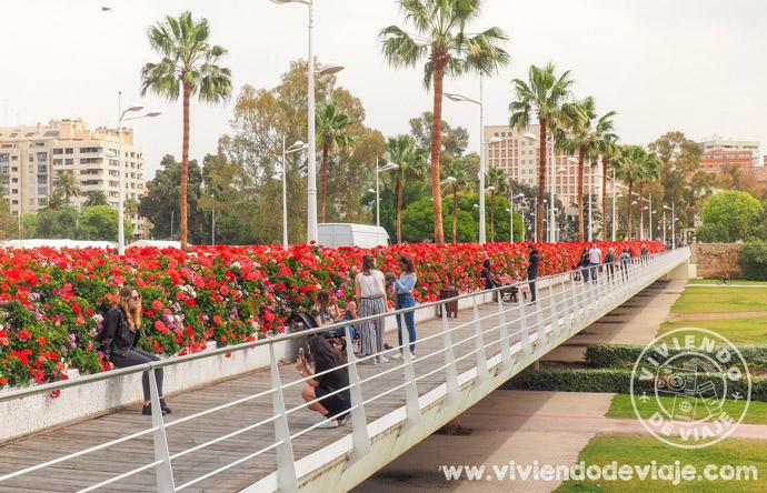 Que hacer gratis en Valencia, Puente de las Flores