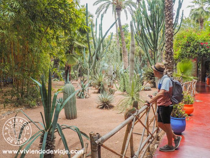 Marrakech por libre, Jardín Majorelle