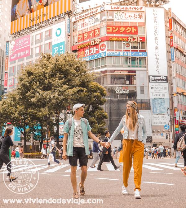Ruta por Japón en 21 días, Tokio