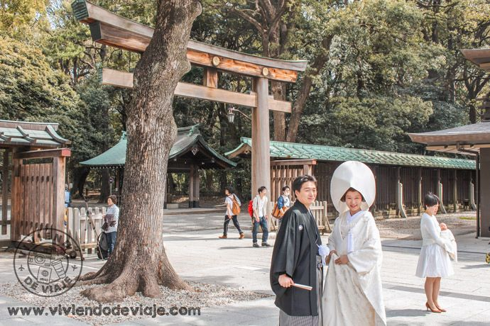 Boda japonesa en el Santuario Meiji-Jingu