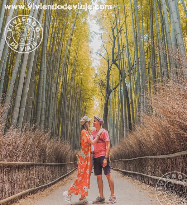 Que hacer en Kioto, Bosque de bambú