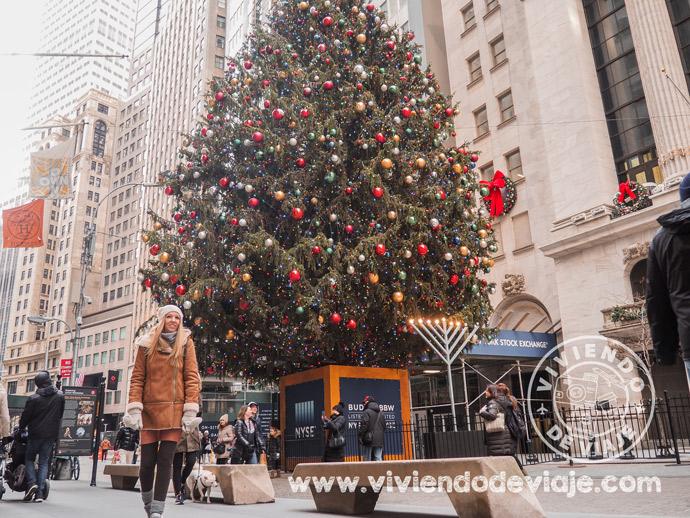 Navidad en Nueva York - Árbol de Wall Street