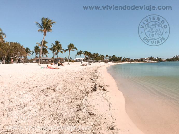 ¡Recorrer los Cayos de Florida! Excursión imprescindible en tu visita a Miami