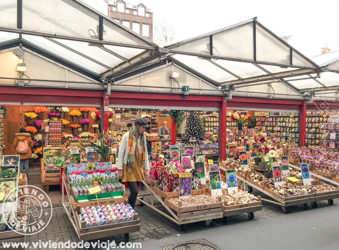 Mercado de las flores en Ámsterdam