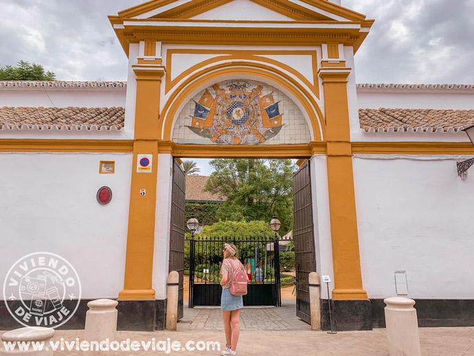 Entrada al Palacio de las Dueñas en Sevilla