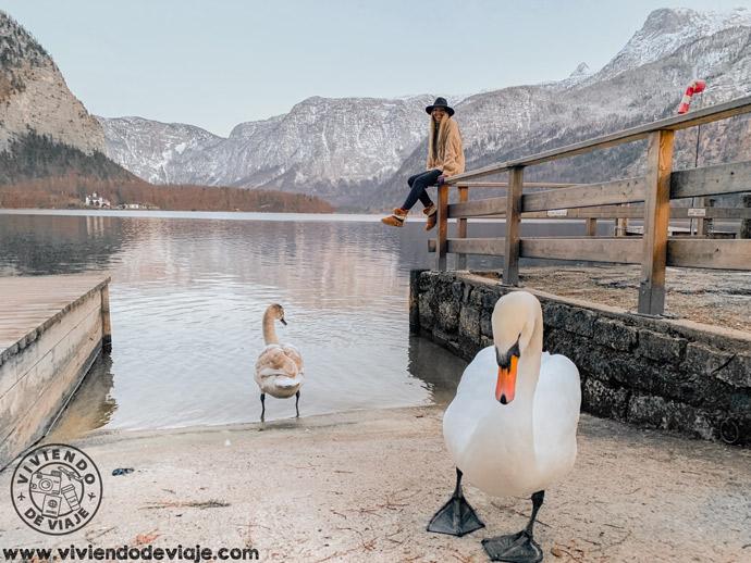 Lago de Hallstatt, Austria