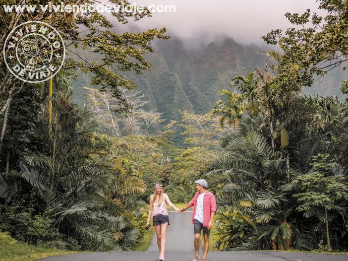 Lugares qué visitar en Hawaii, Jardín Botánico Ho'omaluhia