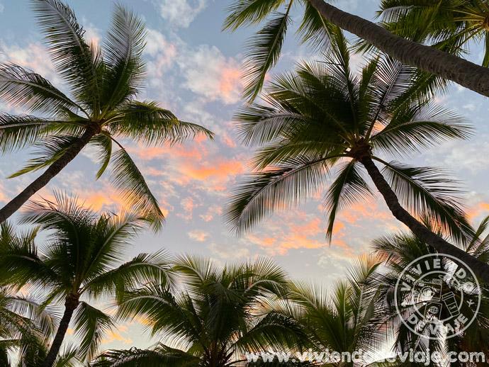 Viaje a Hawaii por libre
