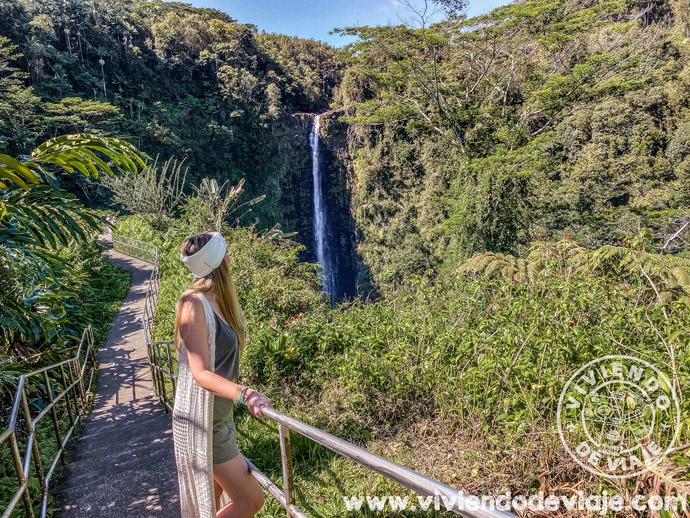 Akaka Falls en Big Island, Hawaii