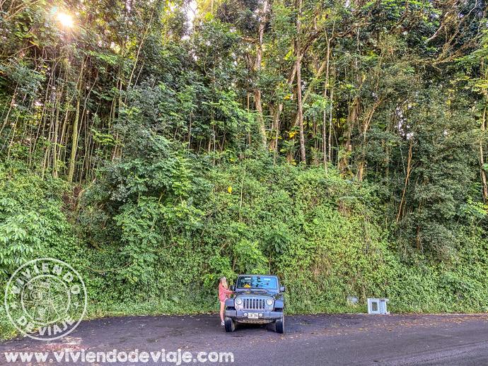 Aparcamiento para ver las Makapipi Falls