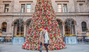 Guía de Nueva York en Navidad